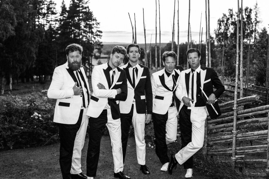 Party with The Hives'
