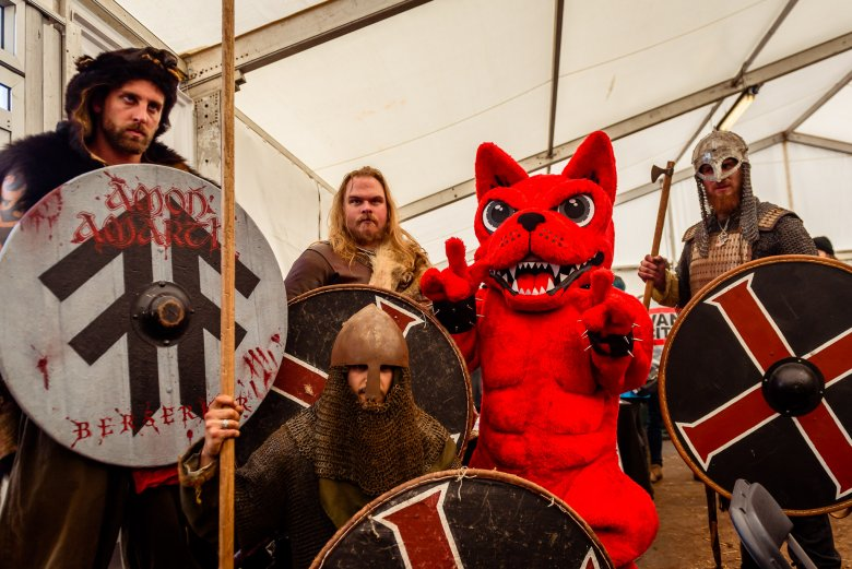 Download Dog and Vikings
