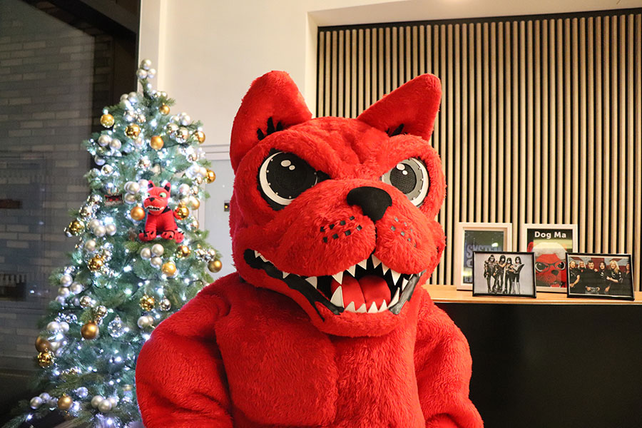 Watch: The Download Dog's Christmas Message