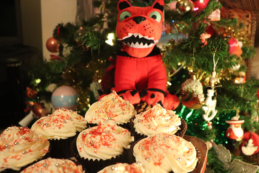 How to make Rocking Vegan Christmas Cupcakes
